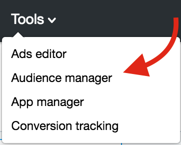 Choose Audience Manager in Twitter
