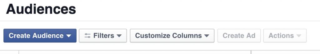 Create An Audience on Facebook